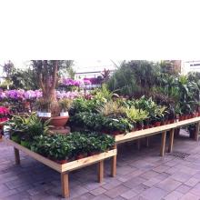 Stół wystawowy ekspozycja pod rośliny kwiaty drewniany inspekt
